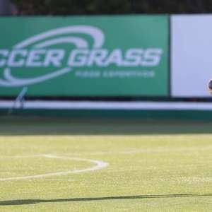 Palmeiras se sente treinando como no Allianz e já prevê ...