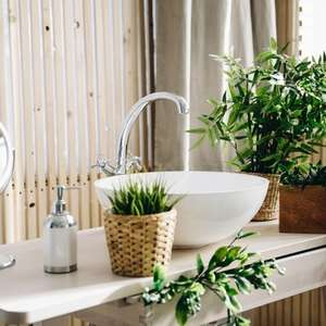 8 plantas perfeitas para decorar o seu banheiro e ...