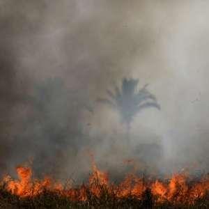 Queimadas na Amazônia têm alta de 28% em Julho, informa Inpe