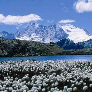 Região do norte da Itália lidera ranking de reputação turística no país