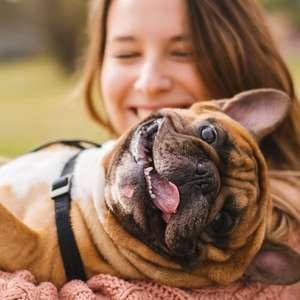 Descubra qual é a raça de cachorro de cada signo e sua personalidade