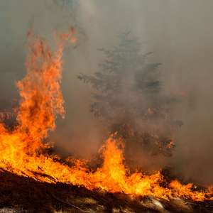Chuva ajuda a controlar incêndios no oeste dos EUA