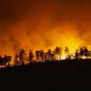 Fumaça de queimadas prejudica a qualidade do ar e agrava ...