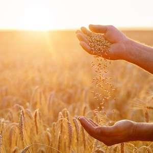 Como cuidar da sua energia e conseguir atrair prosperidade
