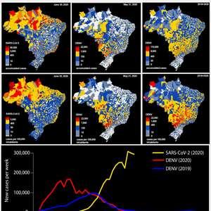 EXCLUSIVO-Pesquisa brasileira aponta correlação inversa ...