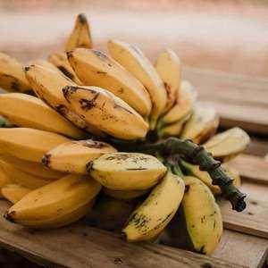 Confira todas as propriedades místicas da banana