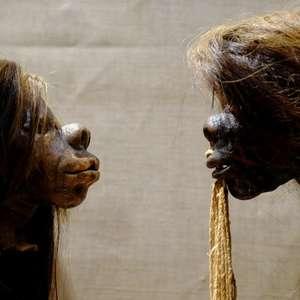 A mórbida coleção de cabeças humanas que museu no Reino ...