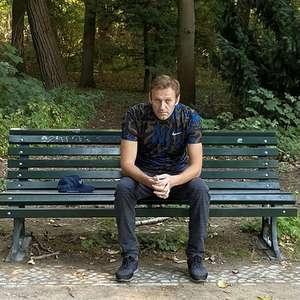 Após receber alta de hospital, Navalny diz que pretende ...