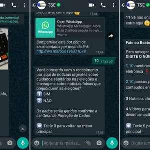 WhatsApp e TSE fazem parceria contra fake news nas ...