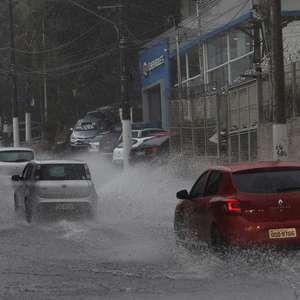 SP: chuva provoca 10 pontos de alagamento e queda de árvores