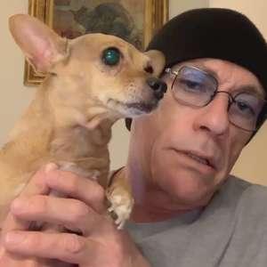 Jean-Claude Van Damme salva vida de cachorrinho preso e ...