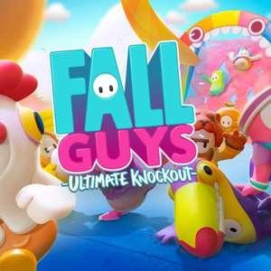 Posso escolher a cor da minha equipe em Fall Guys?