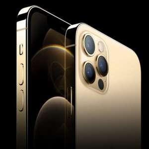 iPhone 12 Pro Max é homologado pela Anatel para venda no ...