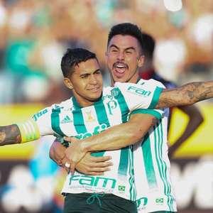 Palmeiras reencontra Atlético-GO novamente com técnico ...