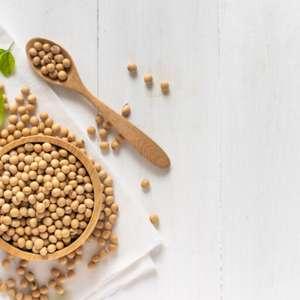 Receitas com soja: 9 opções para adicionar ao cardápio