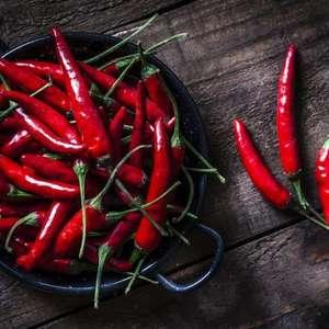 Conheça os diferentes tipos de pimenta e saiba como ...