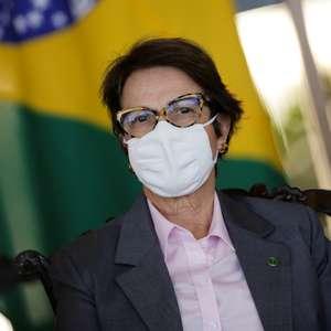Brasileiros estão recebendo pacotes com sementes e pragas