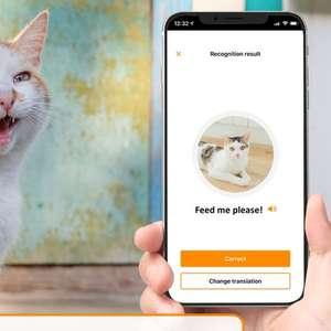 O app que promete traduzir o miado do seu gato