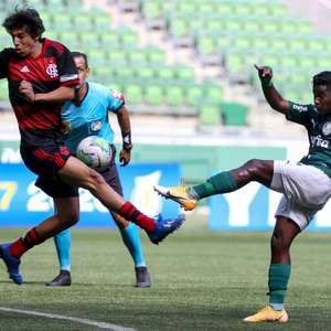 Palmeiras empata com Flamengo em casa e é eliminado do ...