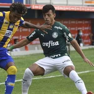 Vitória sobre Delfín mantém invencibilidade do Palmeiras ...