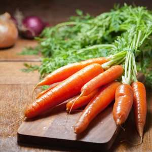 Receitas com cenoura para inovar no cardápio