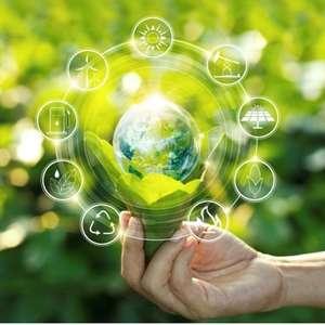 Responsabilidade ambiental se torna diferencial para ...