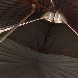 Venda de soja do Brasil evolui pouco e atinge 56,6% da ...