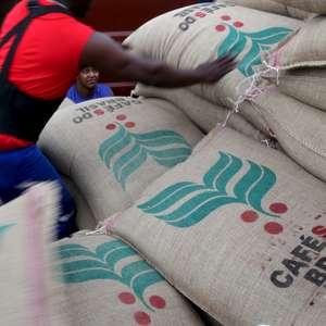 Exportador de café Terra Forte tem plano de recuperação ...