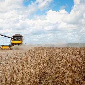 Alvo de Bolsonaro, China comprou 1/3 das exportações do agro