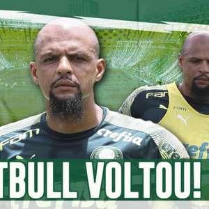Boletim: Felipe Melo se recupera e treina normalmente no Palmeiras
