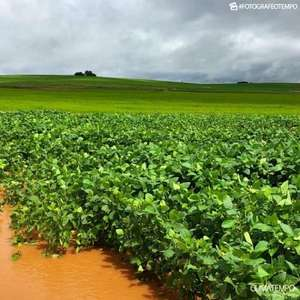 Semana será de chuva muito volumosa na Região Sul