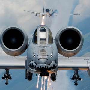 Tigres Voadores: A incrível saga de uma operação secreta