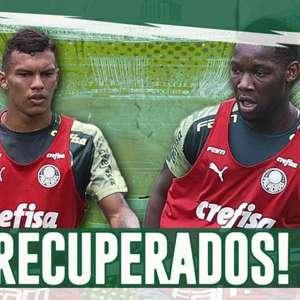 Boletim: Palmeiras anuncia campeã da Libertadores; Patrick de Paula e Veron retornam de lesão