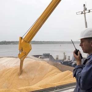 Ucrânia vai limitar exportações de milho em 2020/21 a 24 ...