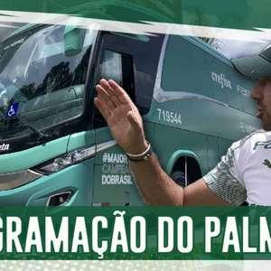 Boletim: confira todas as informações do Palmeiras na ...