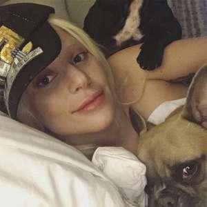 Vídeo registra o roubo violento dos cães de Lady Gaga