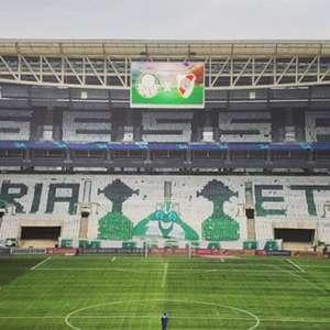 Dominante no Allianz, Palmeiras tem 73% de ...