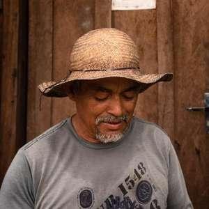 Pandemia impulsiona corrida do ouro no Pará e acirra ...