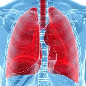 Cuide dos pulmões para fazer treinos mais potentes