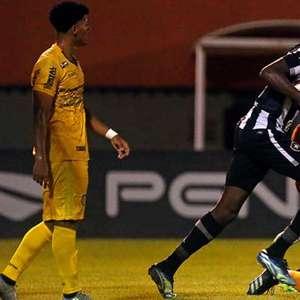 Botafogo x Portuguesa: prováveis times, desfalques, onde assistir e palpites
