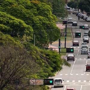 FAO inclui 3 cidades do BR entre as mais arborizadas do mundo