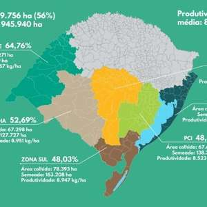 Produtores do RS já colheram 56% da área semeada
