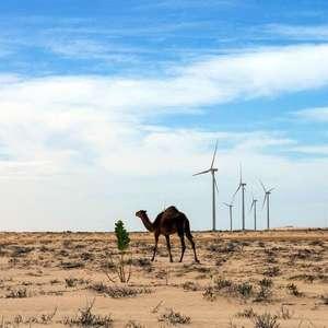 Energias renováveis podem levar energia à África
