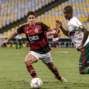 Portuguesa x Flamengo; prováveis times, desfalques, onde ...