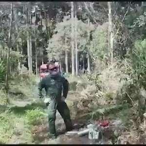 Após problemas em parapente, homem é 'enforcado' em meio a árvores e é resgatado