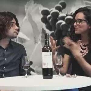 Black Friday: Guia dos melhores rótulos de vinhos