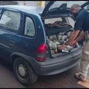 Casal é preso por tráfico de drogas em Santa Terezinha de Itaipu