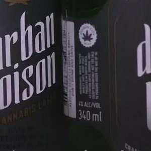 África do Sul cria cerveja com sabor de cannabis