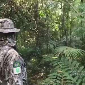 Polícia faz operação de combate à crimes ambientais na fronteira com a Argentina