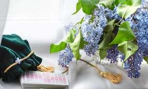 Tarot das Flores: o que virá para seu signo de 19 a 25 de abril